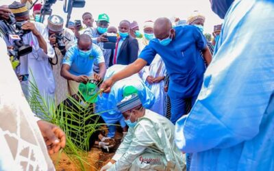 Tree Planting Campaign: Sokoto State Govt. Purchases, Distributes Two Million Seedlings